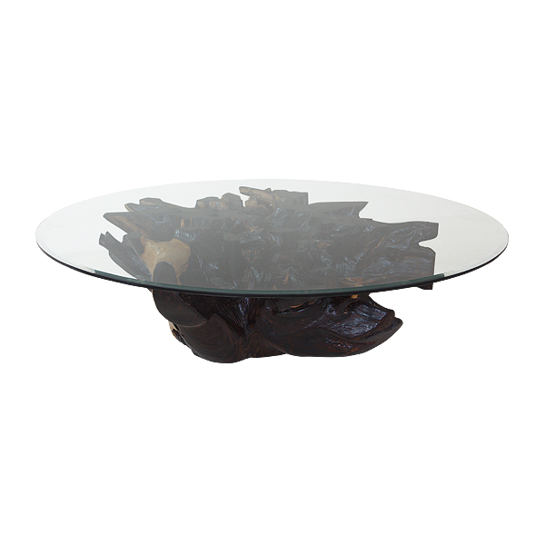 Origin Root Coffee Table