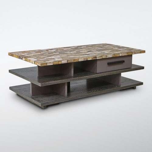 Tier Coffee Table with Petrified Wood